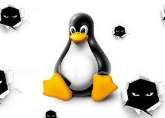 Phát hiện mã độc QNAPCrypt tấn công vào hệ thống lưu trữ Linux